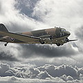 DC3 Dakota   Workhorse Poster by Pat Speirs