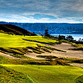 #16 at Chambers Bay Golf Course - Location of the 2015 U.S. Open Tournament Print by David Patterson