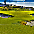 #17 at Chambers Bay Golf Course - Location of the 2015 U.S. Open Championship Print by David Patterson
