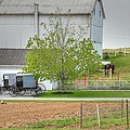 An Amish Farm Poster by Dyle   Warren