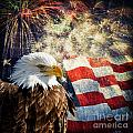 Bald Eagle and Fireworks Print by Michael Shake