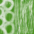 Bamboo Poster by Linda Woods