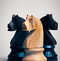 Chess Knights Print by Mark Fearon