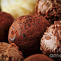 Chocolate truffles Poster by Elena Elisseeva