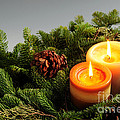 Christmas candles Poster by Elena Elisseeva
