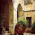 Courtyard in Capri Poster by Julie Palencia