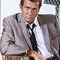 Darren McGavin Poster by Silver Screen