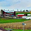 Down on the Farm Print by Frozen in Time Fine Art Photography