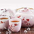 Green tea set Print by Elena Elisseeva