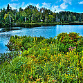 Lake Abanakee in the Adirondacks Poster by David Patterson