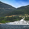 Luxury yacht at the coast of French Riviera Print by Elena Elisseeva