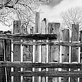 old patched up wooden fence using old bits of wood in snow Forget Saskatchewan Canada Print by Joe Fox