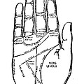 PALMISTRY CHART, 1885 Poster by Granger