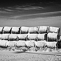 stack of frozen snow covered hay bales in a field Forget Saskatchewan Canada Poster by Joe Fox