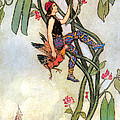 The Fairy Book Poster by Warwick Goble