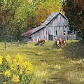 THE OLD COW BARN Poster by Bev Finger