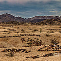 Valley of the Names Print by Robert Bales