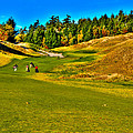 #12 at Chambers Bay Golf Course - Location of the 2015 U.S. Open Tournament Print by David Patterson