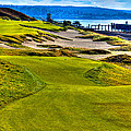 #16 at Chambers Bay Golf Course - Location of the 2015 U.S. Open Championship Print by David Patterson