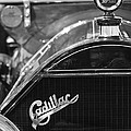 1911 Cadillac Roadster Grille and Hood Ornament Poster by Jill Reger