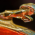 1939 Dodge Business Coupe V8 Hood Ornament Print by Jill Reger