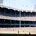 1961 World Series Print by Retro Images Archive