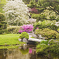 Asticou Azelea Garden - Northeast Harbor - Mount Desert Island - Maine Print by Keith Webber Jr