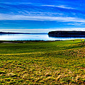 #2 at Chambers Bay Golf Course - Location of the 2015 U.S. Open Tournament Print by David Patterson