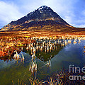 Buachaille Etive Mor Scotland Poster by Craig Brown