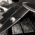 Fins and Boards Print by Ron Regalado