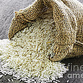 Long grain rice in burlap sack Poster by Elena Elisseeva