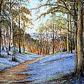 Spring in Wentwood Print by Andrew Read