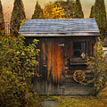 The Shed Print by Jessica Jenney