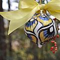 Majolica Maiolica Ornament by Amanda  Sanford