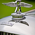 1937 Railton Rippon Brothers Special Limousine Hood Ornament Print by Jill Reger