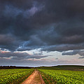 Countryside landscape path leading through fields towards dramat Print by Matthew Gibson