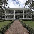 Rosedown Plantation Print by Photo Advocate