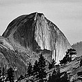 Half Dome Print by Cat Connor