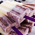Vanilla and Blueberry Popsicles Poster by Teri Virbickis