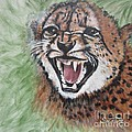 420 Growling Baby Cheetah Poster by Sigrid Tune