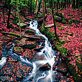 Chesterfield Gorge New Hampshire Print by Edward Fielding