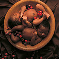 Untitled Poster by Anne Geddes