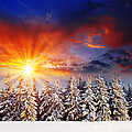 A Beautiful Sunset in the Winter Poster by Boon Mee