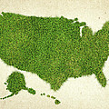 United State Grass Map Print by Aged Pixel