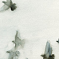 A Flock of Pigeons 1 Watercolor Painting of Birds Print by Beverly Brown Prints