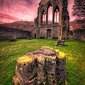 Abbey Ruin Print by Adrian Evans