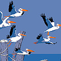 abstract Pelicans seascape tropical pop art nouveau 1980s florida birds large retro painting  Poster by Walt Curlee