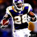 Adrian Peterson 01 - Football - fantasy Poster by Paul Ward