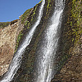Alamere Falls Pacific Coast Print by Garry Gay