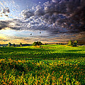 All I Need Print by Phil Koch